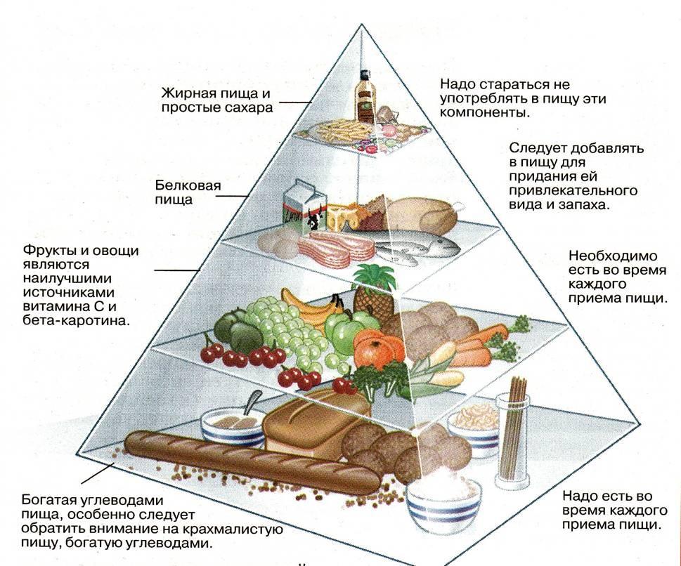 особенность здорового питания кроссворд